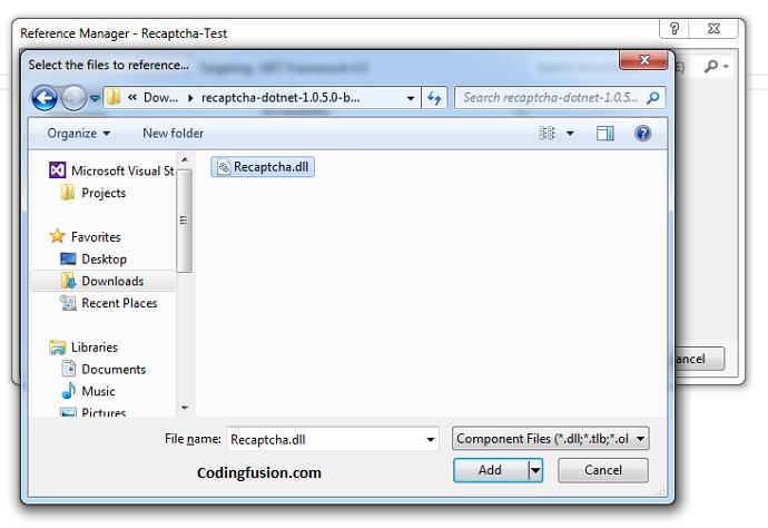 2 Different ways to add google recaptcha in asp  net-asp net